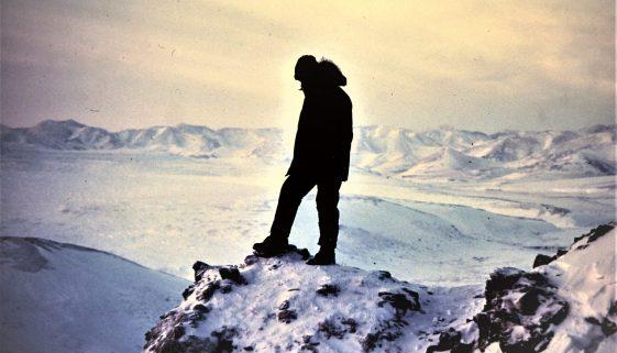 joe arctic stand